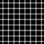 black dots or white dots?