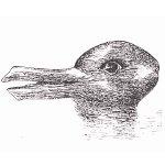 rabbit or duck?
